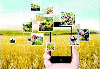 数字农业服务平台
